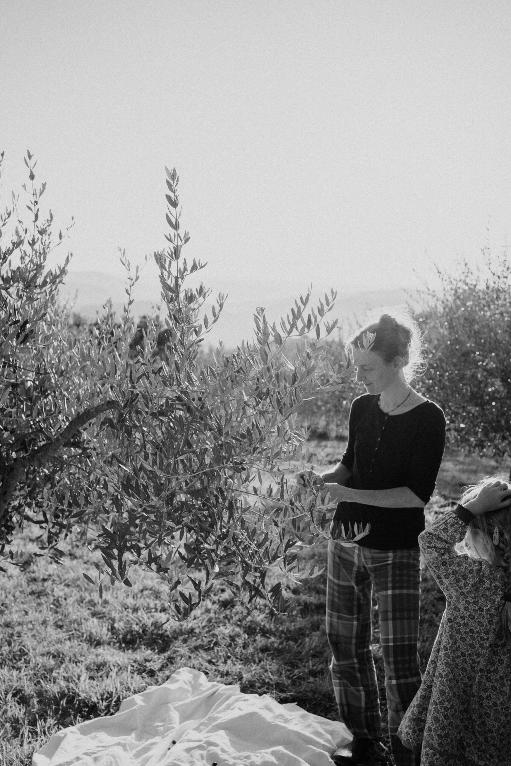 family photographer tuscany 25 scaled