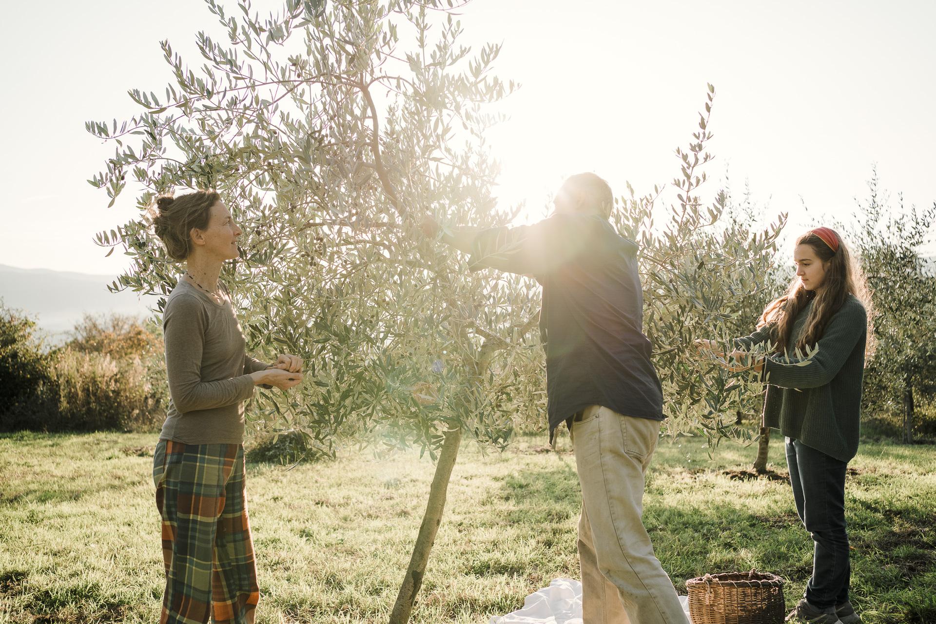 family photographer tuscany 28